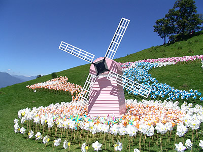 【Travel series】Cingqing Windmill Festival