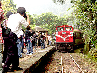 Alishan Forest Railway goes through the a chain of mountains (Taiwan Classic Railway Trip)
