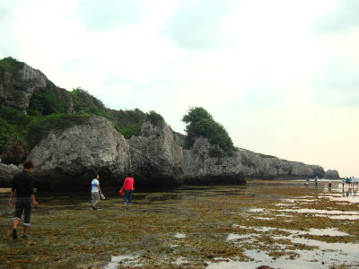 Duzaiping Intertidal Zone – The Natural Ecological Aquarium of  Liouciou (Summer Love in Dapeng Bay)