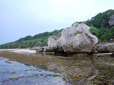 Thick Stone Reef – The Wonder of Little Liouciou (Summer Love at Dapeng Bay)