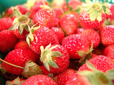 The Sweet, Aromatic and Luscious Taste of Guosing Strawberries (Local Specialties)