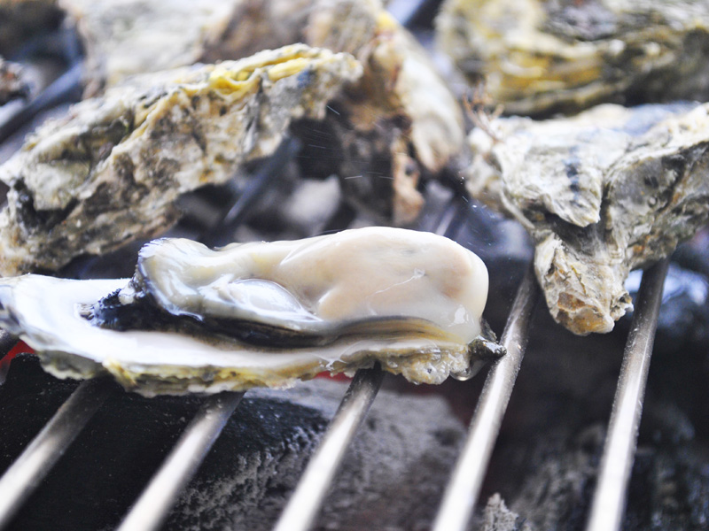 The Freshest Taste of Grilled Oyster that You Can't Miss