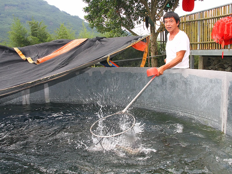 Pay a Visit to Janshih Township and Savor Flavorful Trout Cuisine