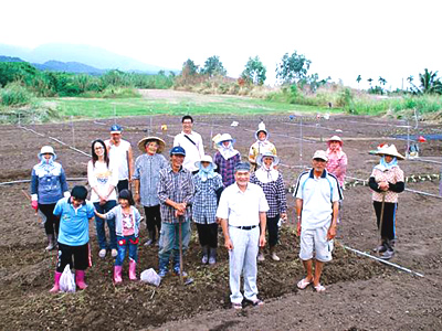 Experience one day farmer-trip in Taitung